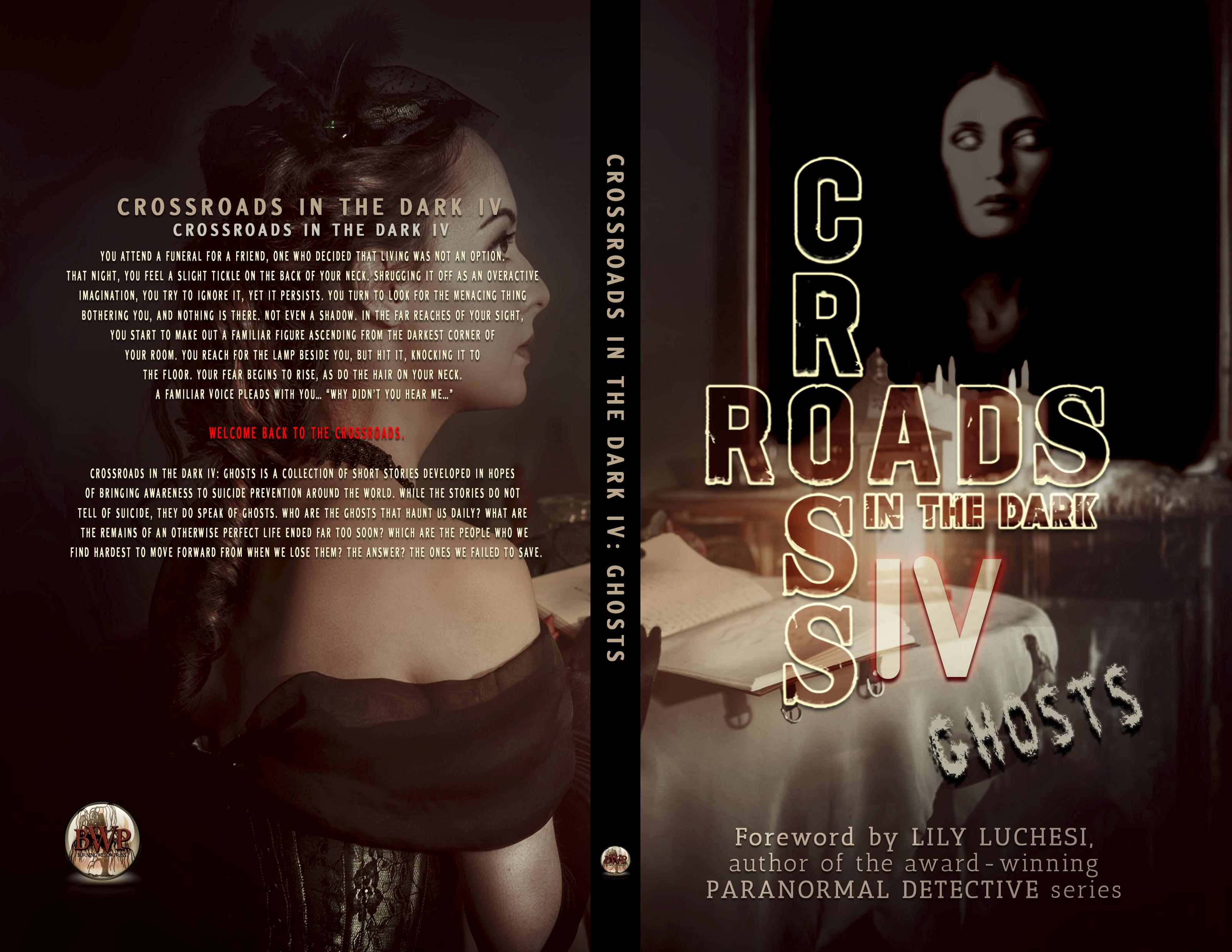 paperbackcritd4previewfinal.png